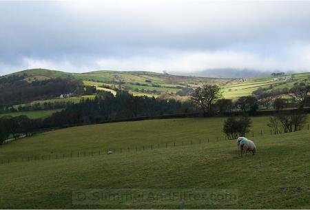 Blacko hills