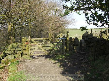 Gate across Callis Wood footpath