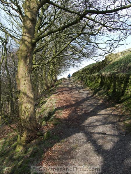 Approaching Horsehold from Callis Wood