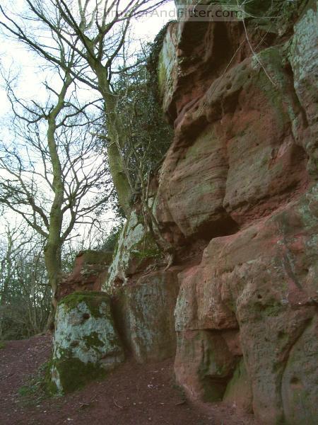 Corley rocks