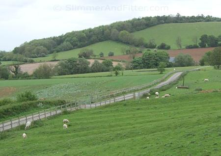 Cotswold lane