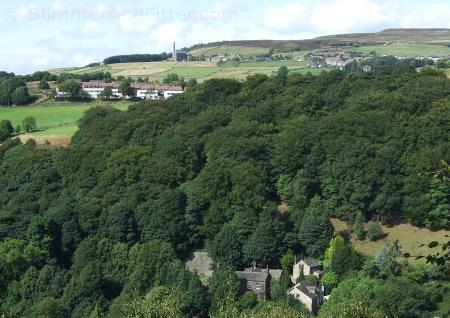 Dodd Naze and Old Town from Crow Nest Wood