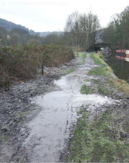 Ice on the Rochdale canal towpath