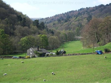 Looking from Midgehole towards Hardcastle Crags