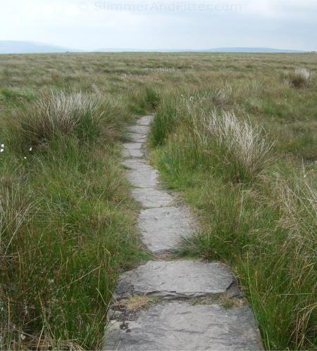 Stone slabs on Pennine Way at Langfield Common
