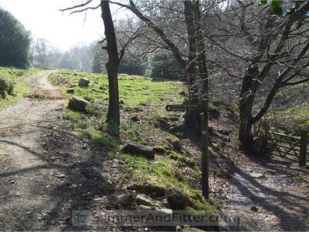 Pennine Bridleway, Callis Wood