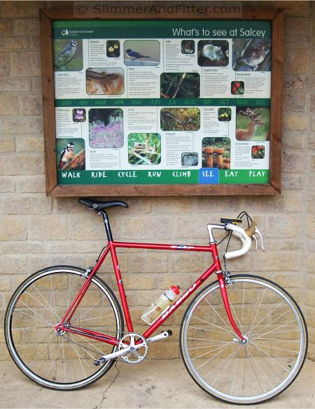 Singlespeed bike at Salcey Forest Visitor Centre