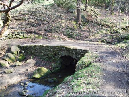 Bridge in Callis Wood