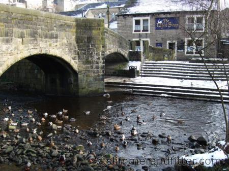 Ducks by the old packhorse bridge