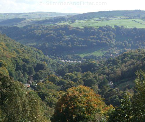 View of autumn leaves from the Calderdale Way