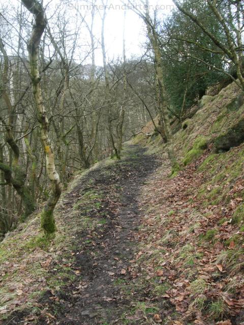 Callis Wood footpath